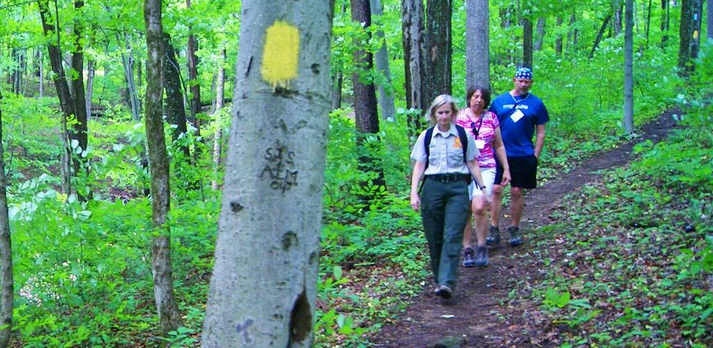 People Hiking in the woods
